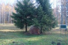 Partizanskja_poljana (66)