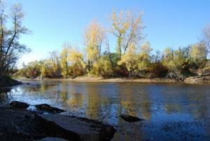 Хороший клев рыбы в реках