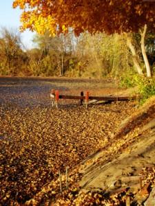 Хороший клев в осенней реке