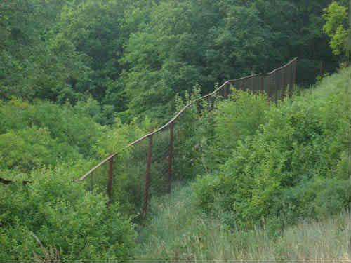 Забор вдоль тропинки