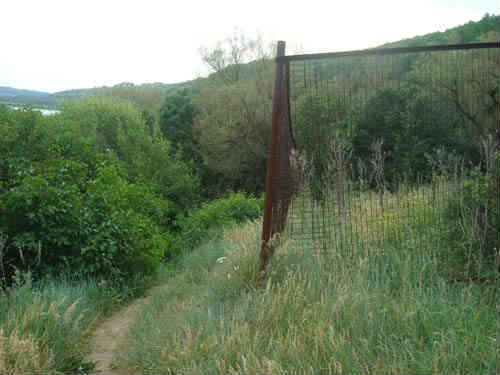 Забор у тропинки