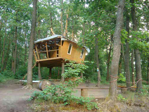 Форест парк, домик на сваях в лесу