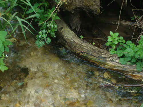 Чистая вода водопада