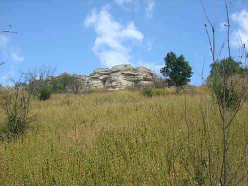 Воргольские скалы поле