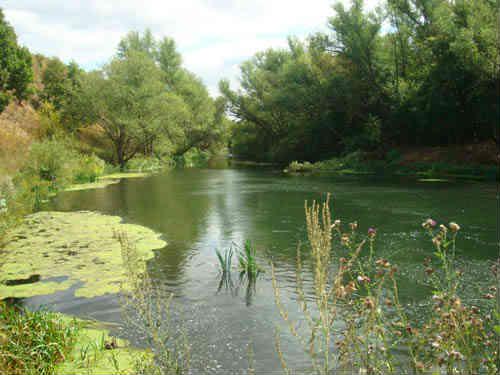 Вид с Воргольских скал на реку Воргол