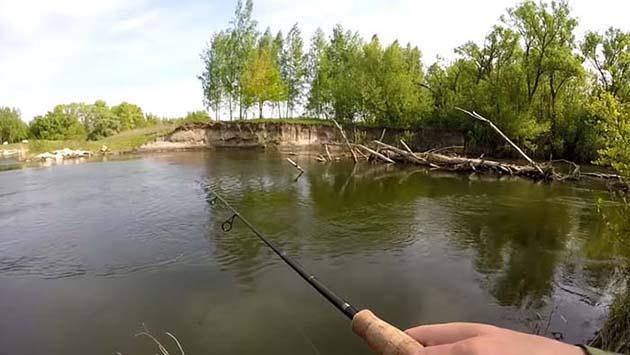 Ловля голавля методом листик