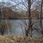 Как ловить голавля весной, открываем новый сезон