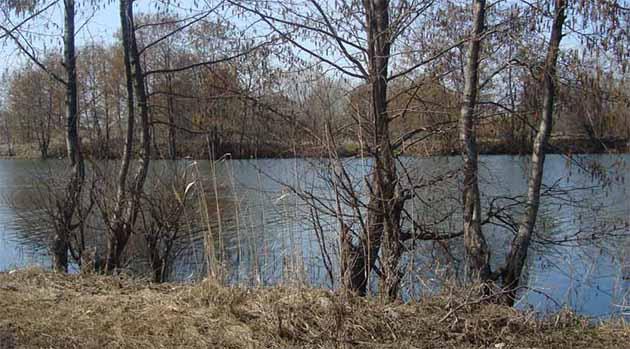Как ловить голавля весной на реках