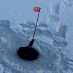 Ловля голавля зимой, как правильно ловить и на какие снасти