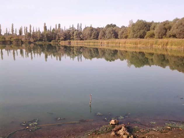 Затон возле реки