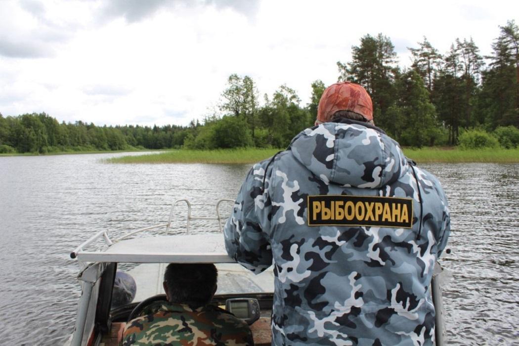 Рыбохрана на лодке