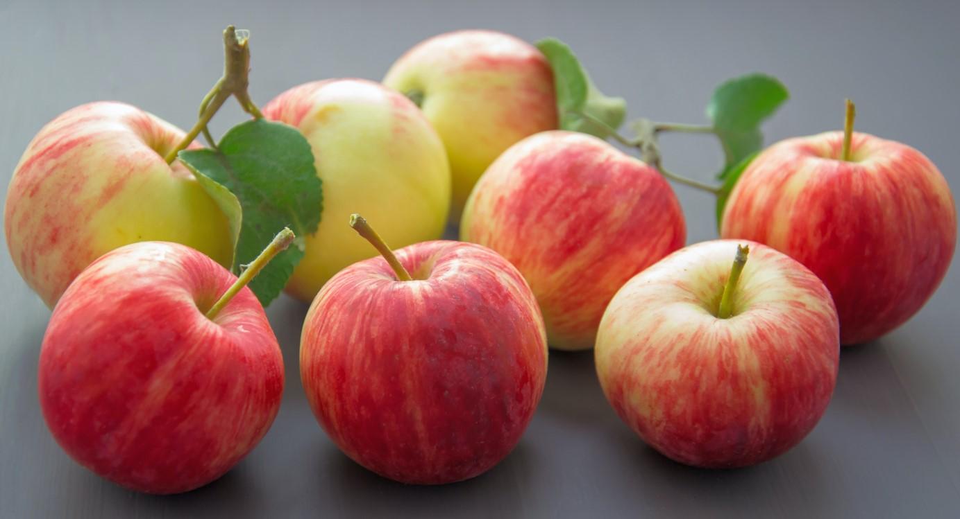 Как ухаживать за яблоками